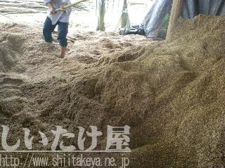 菌床の原料